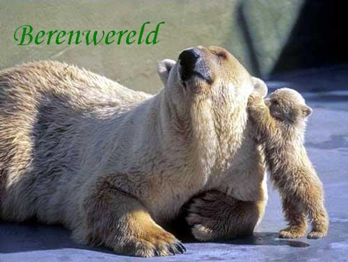 Berenwereld