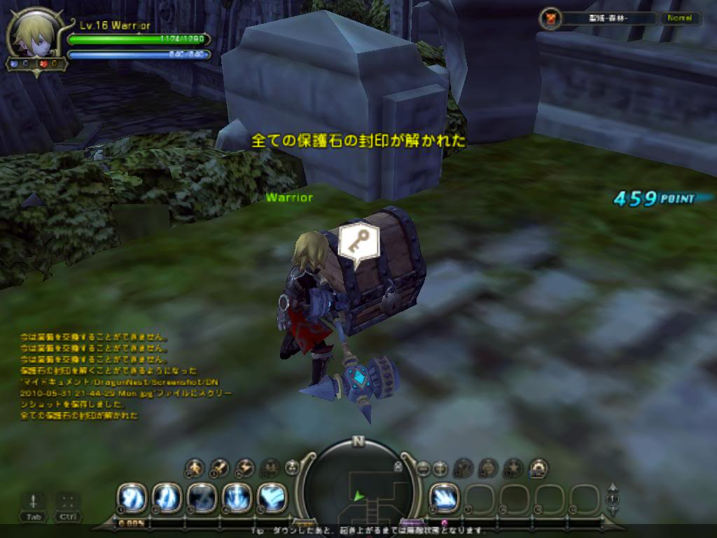 Dragon Nest Demo DN2010-05-3121-44-32Mon