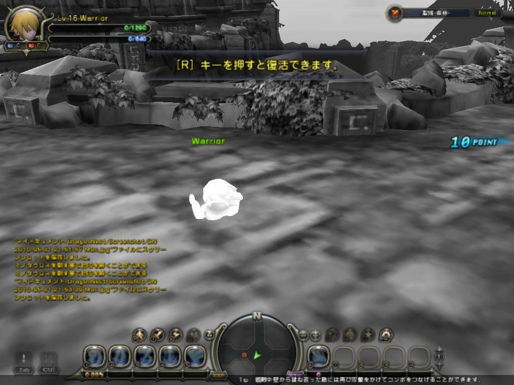 Dragon Nest Demo DN2010-05-3121-53-47Mon