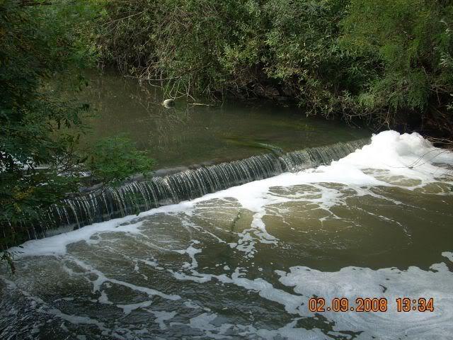 Nase fotografije prirode Picture015-3