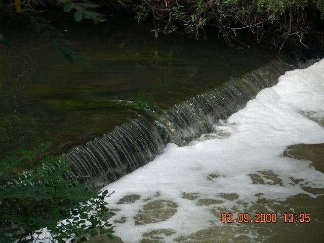 Nase fotografije prirode Picture017-3