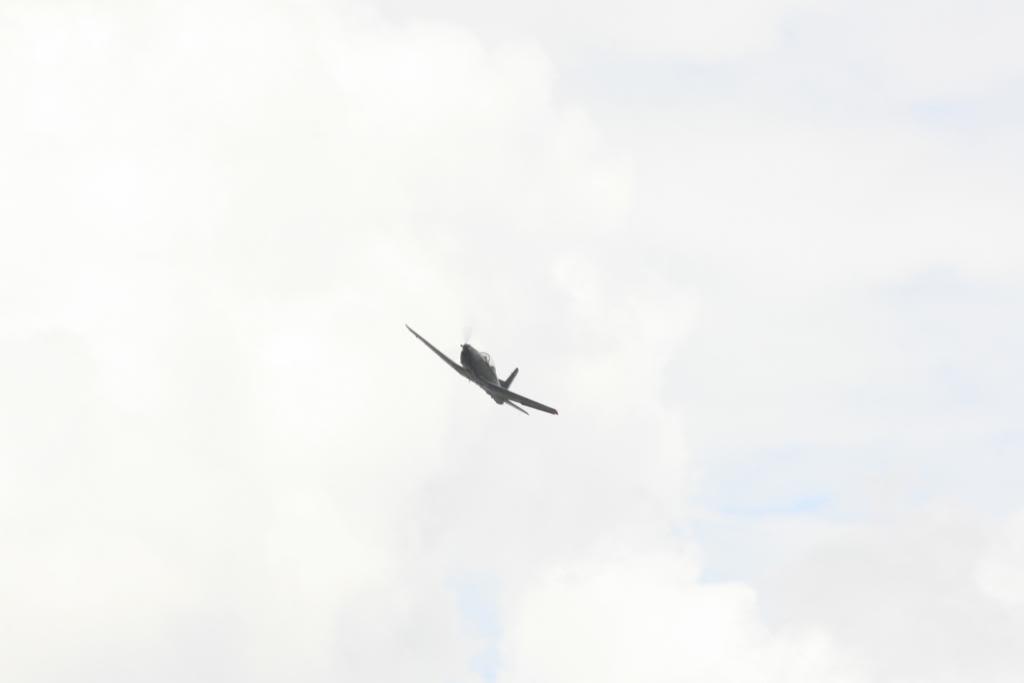 3er. Espectáculo Aéreo en Sta. Lucia - Página 13 _MG_4323