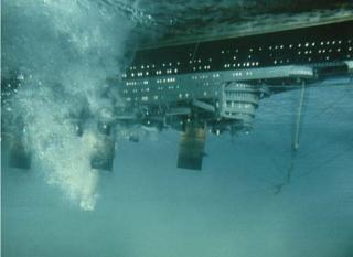 The Poseidon Adventure (1972) Poseidonadventur