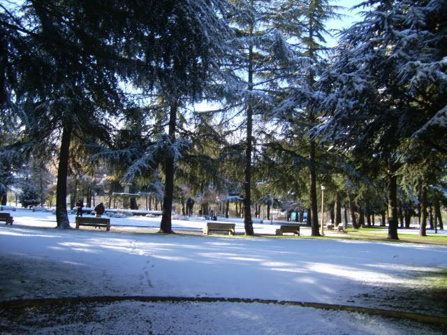 ¡¡ Galicia se tiñe de blanco ¡¡ PIC_0241