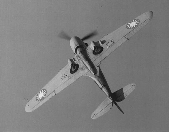 Actual WWII aircraft pictures - ALLIES P-40-belly