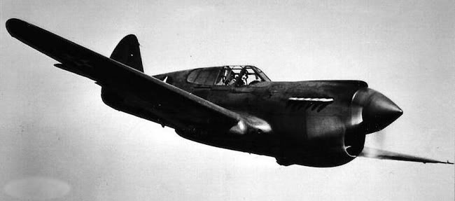 Actual WWII aircraft pictures - ALLIES P-40_warhawk_flight_650