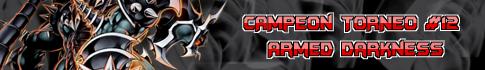 CAMPEONES Y SUBCAMPEONES Banner-campeon-torneo-2