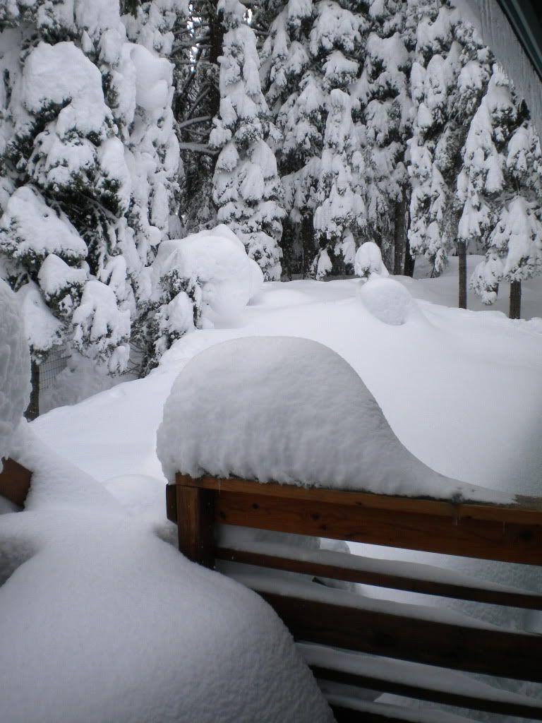 snow!! - Page 2 DSCN0967