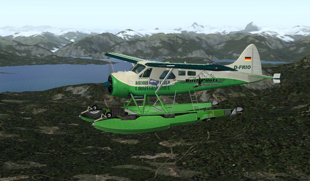 DHC 2-Beaver Image4358013