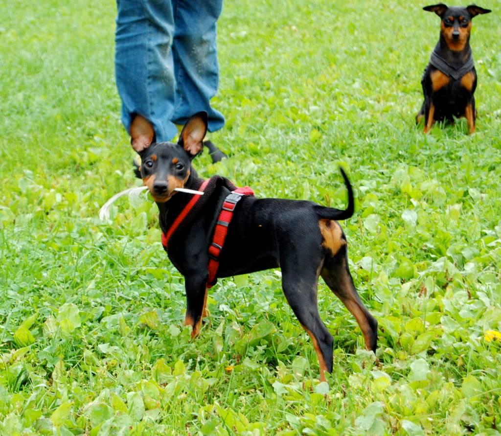 Camilla,Tina&Edith DSC_5328