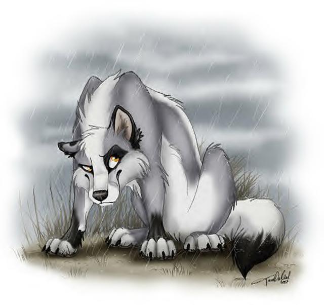 The Nahimana Wolf Pack ((RESTARTED)) Kiyoshi
