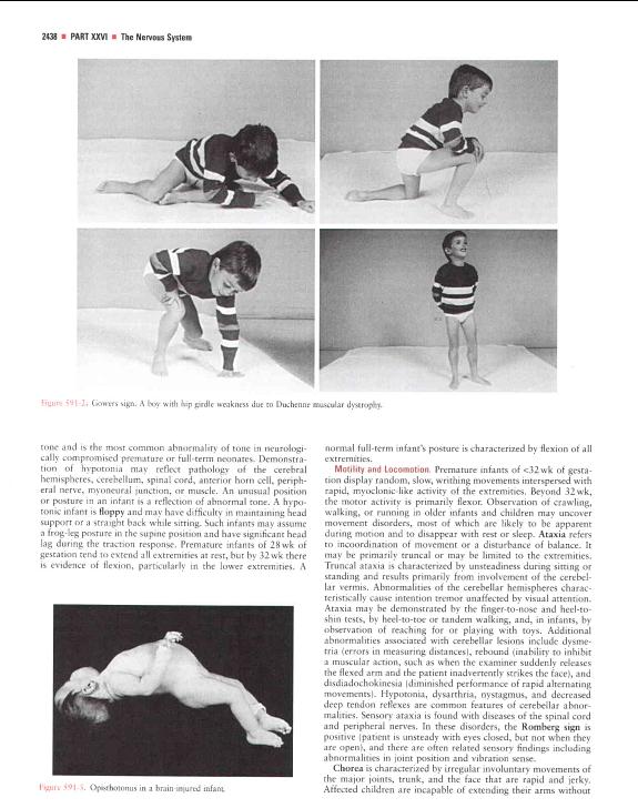 Neurologic Evaluation......?(PDF) 2008-04-17_01-22-12-953