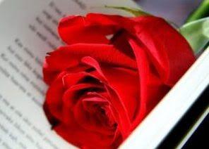 Những Đoá Từ Tâm - Thơ Tình Yêu, Tình Nước - Page 4 ConNangHanhTrang-Vntvnd