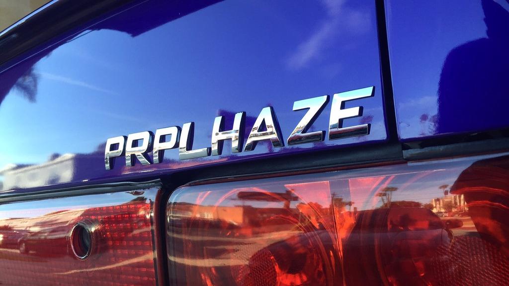 "My Purple 101... AKA ""Purple Haze"" 951EB969-9FA2-47E9-ABBB-894FAF976E2E_zpsc1h0mcb4"