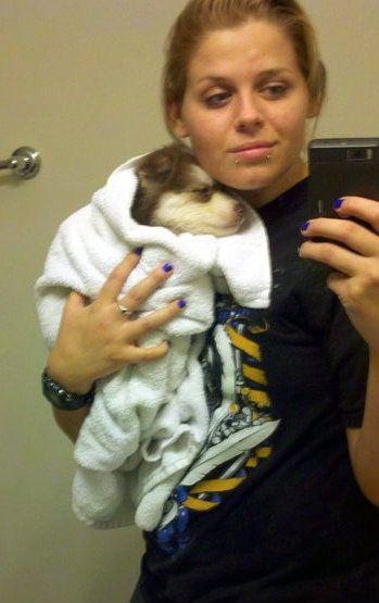 My first puppy, hello from Evansville IN - Page 2 Photobucket-29531-1358800735937