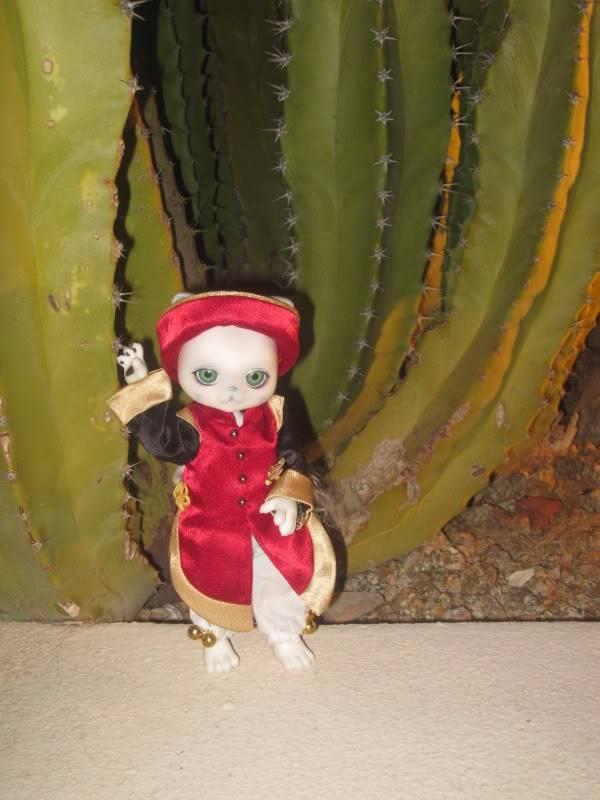 luts zuzu delf  tombling chu (cat doll) IMG_0689