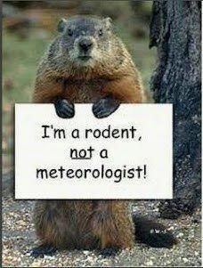 It's Ground Hog Day! Groundhog_zps800a7f17