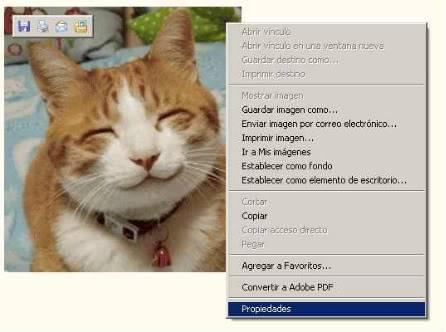 Insertar imágenes en mensajes (a los links de las mismas). Capturaimagenweb01