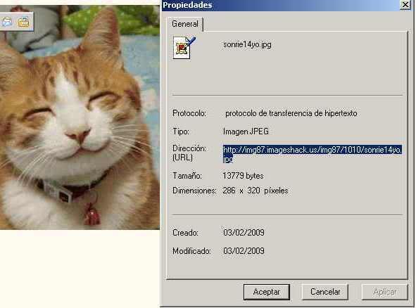 Insertar imágenes en mensajes (a los links de las mismas). Capturaimagenweb03
