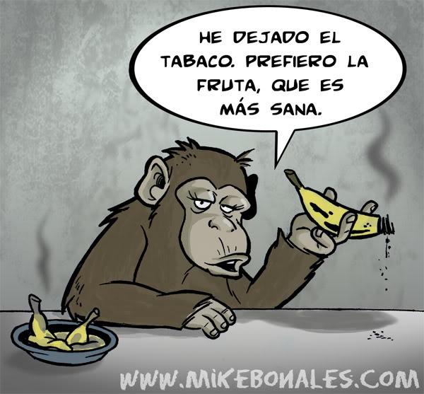 Ley Seca Antitabaco en Buenos Aires Chimpance_high