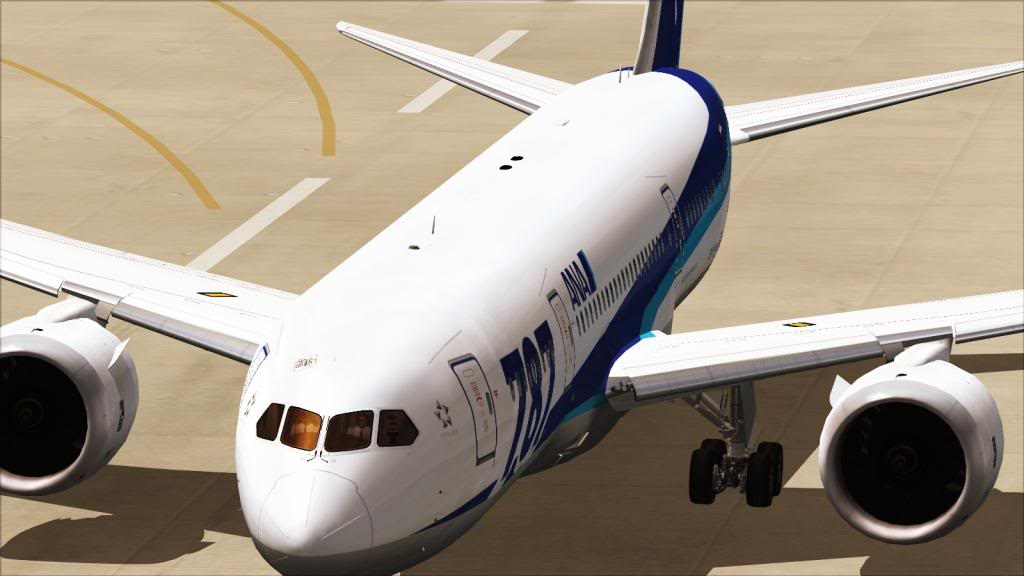testando o 787-8 -2013-jun-29-019_zpsa91c4b6e