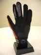 Glove En61302small