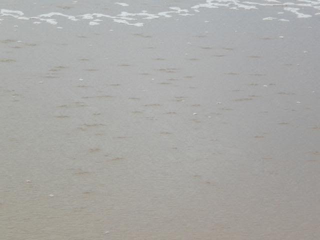 Barra-leve Intermares muito fraco - 30/07/11 Imagem128_640x480
