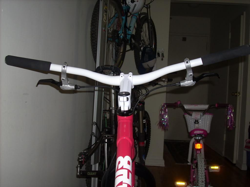 stem/handlebar set up DSCN2471