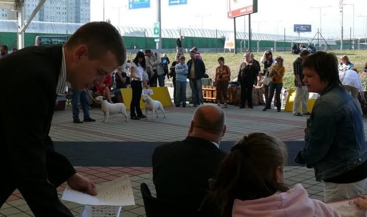 INTERRA, 08.10.2009 Bratislava P1140853