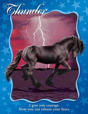 Thunder's Bio 20701
