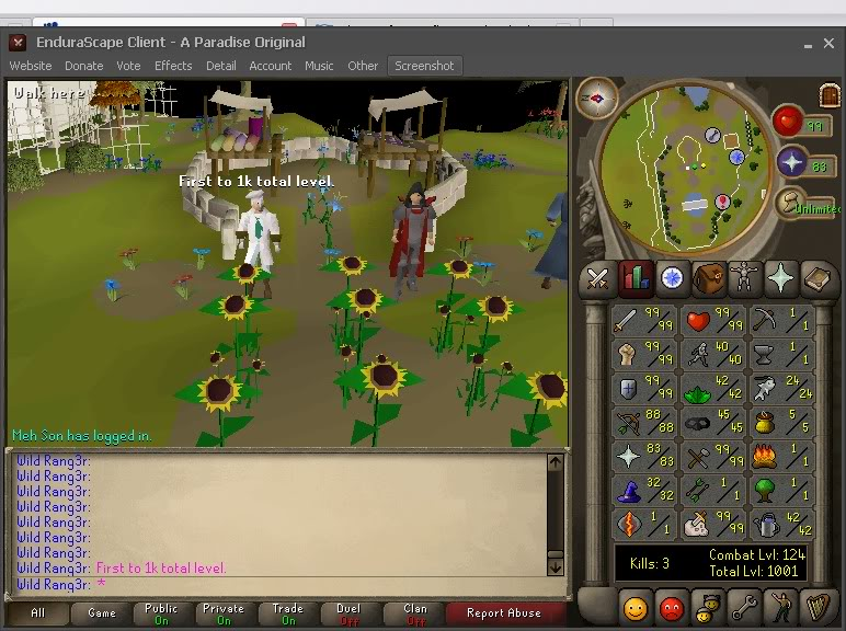 Old Server Pics FirstTo1000TotalLevel