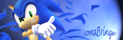 Goodbye Everyone Sonicsoma