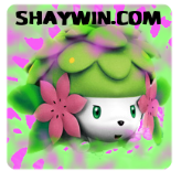 Shaywin