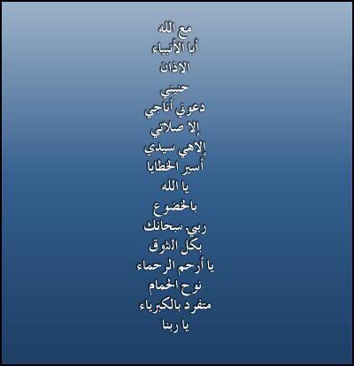 جميع اناشيد مشاري العفاسي وبجودة عالية 7ANEENY_02