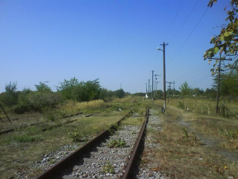 916A : Buzias - Gataia - Jamu Mare DSC01014