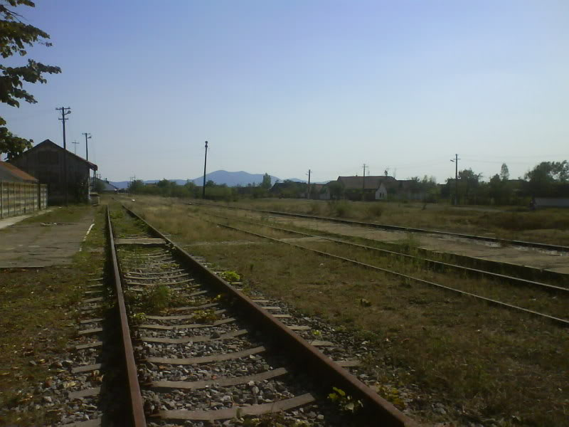 916A : Buzias - Gataia - Jamu Mare DSC01016
