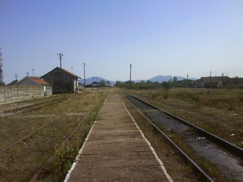 916A : Buzias - Gataia - Jamu Mare DSC01017