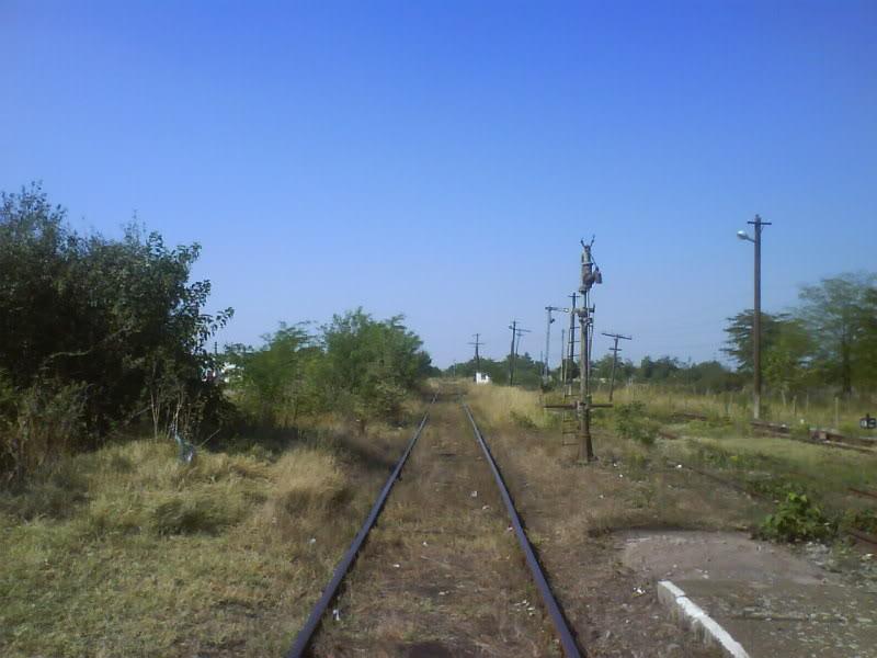 916A : Buzias - Gataia - Jamu Mare DSC01019