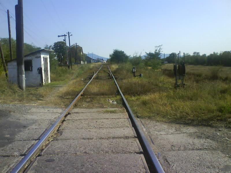 916A : Buzias - Gataia - Jamu Mare DSC01022