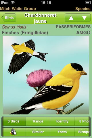Application iPod Touch/iPhone/iPad et Android pour l'identification des oiseaux Cameraroll-1312976164980004