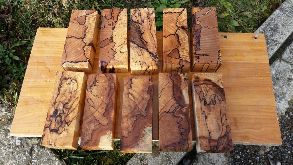 Stabilizacija drva - Page 5 20160114_110123_zpst06umhqy