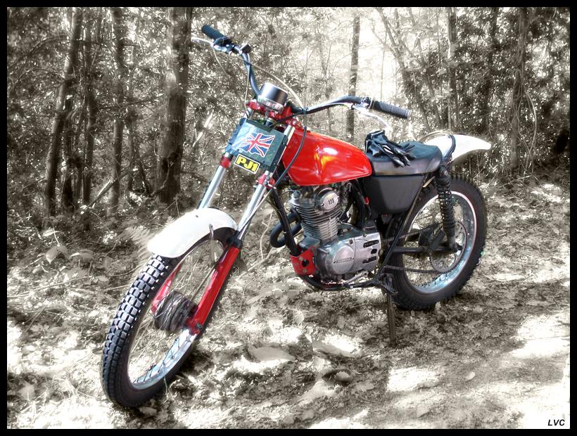 Honda Trial ou trialisées (TL, TLR, TLS...) DSC02579mCopy