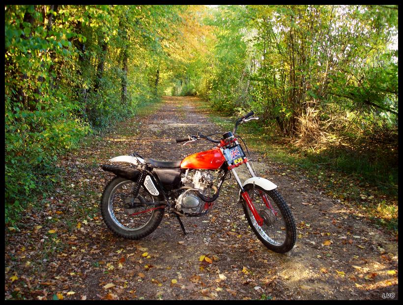 """concours photo oct 2011"""", Votre Honda en automne."""" XL-Autumn"""