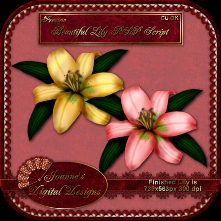 Beautiful Lily SAMPLES from Joanne's Digital Designs JDDLilyPSPScriptPreview