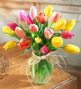 MI SALUDO PARA TODOS M_Us_tulipanes