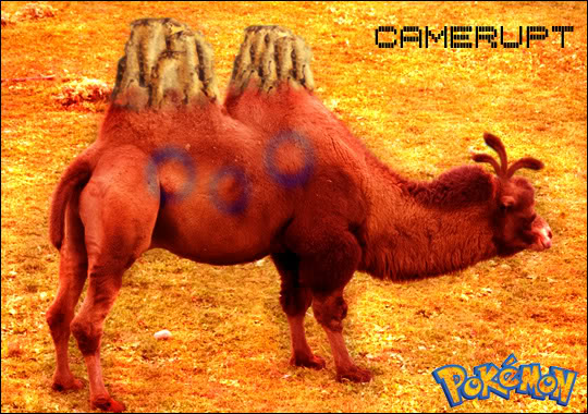 My POKEMON Creations Camerupt1
