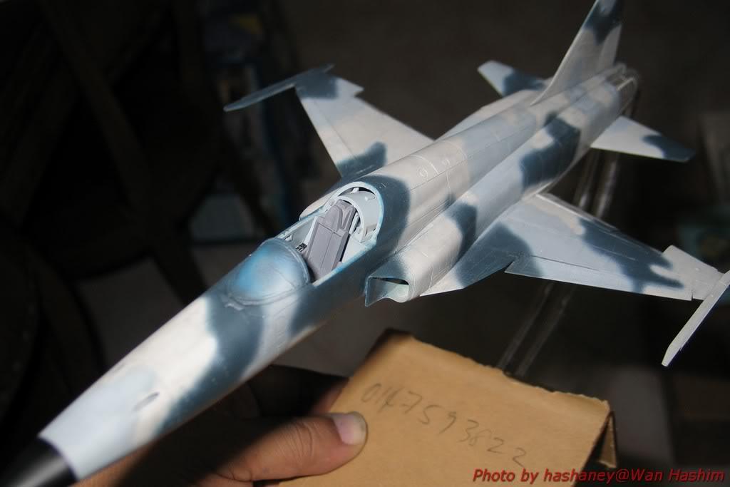 Projek Tentera Udara F-5E002
