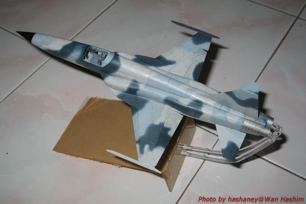 Projek Tentera Udara F-5E003