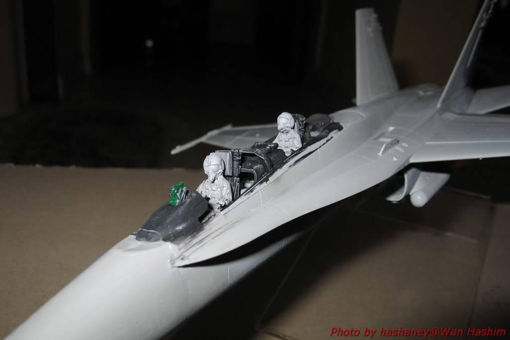 Projek Tentera Udara HornetD002
