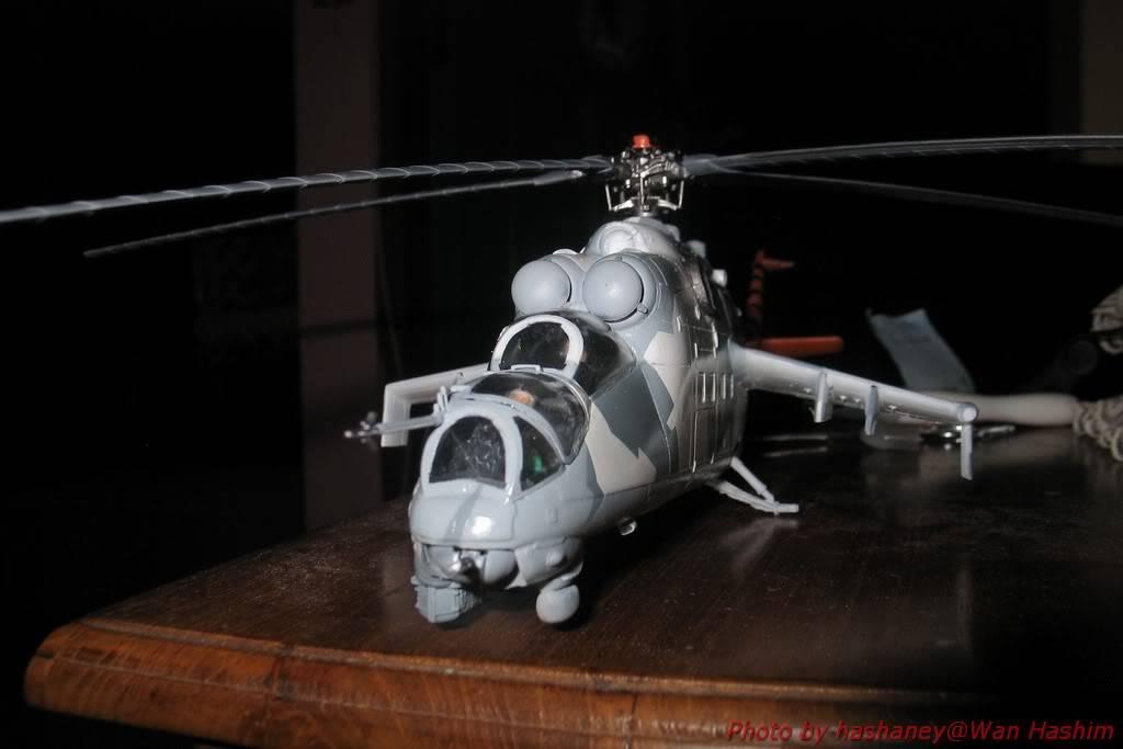 Mi-24D Hind Tigermeet Mi-24DHindTigermeet087